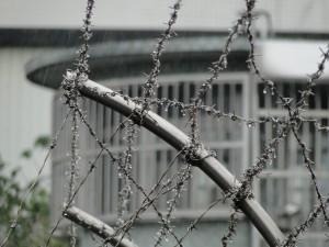 Taipei Prison