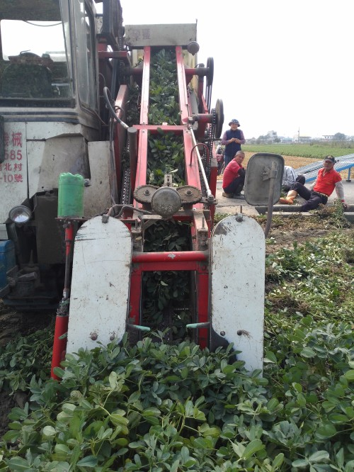 Erdnuss-Erntemaschine