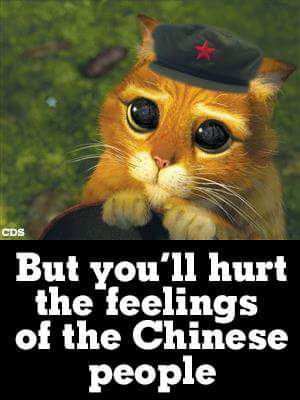 Hurting the feelings of the Chinese people